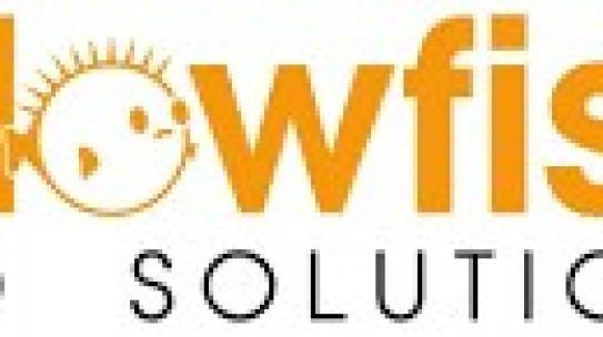 Samenwerking tussen Blowfish Led Solutions en Business development